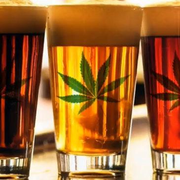 Des bières aux extraits de cannabis.